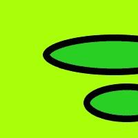 negro/antracita/verde